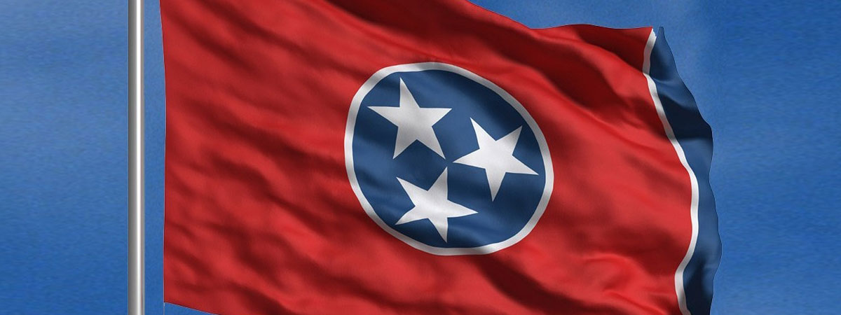 Tennessee State Museum Flag